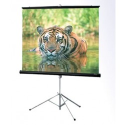 "ScreenView TSSV2121L Tripod Screen 213x213 cm / 84""x84"""