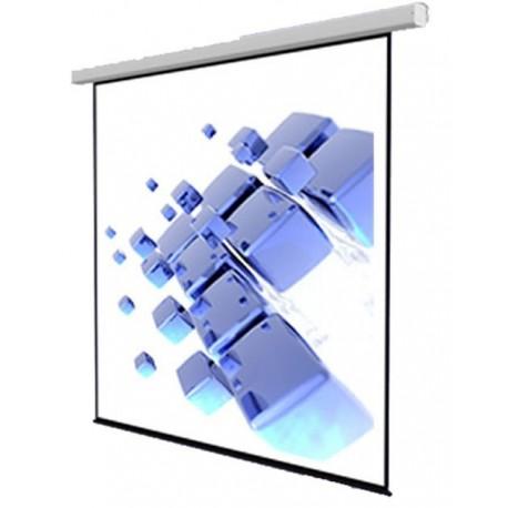 "ScreenView EWSSV3030RL Motorized Screen 300x300 cm / 120""x120"" (RC indluded)"