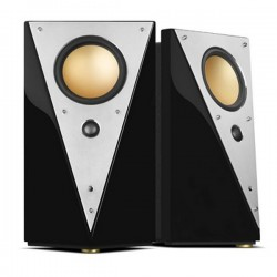 Swans Hivi T200C Professional Active Crossover 2.0 Speaker
