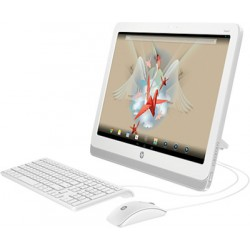 HP SLATE 21-k100 AIO PC