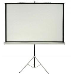 Datalite Tripod 96S Screen Projector 244 x 244 cm