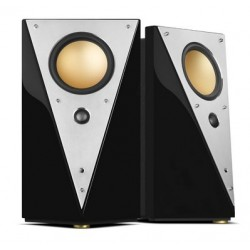 HiVi Swans T200C Professional Active Crossover 2.0 Speaker
