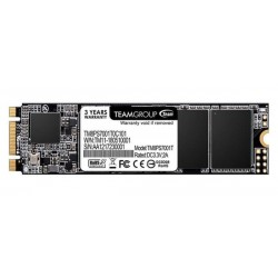 Team MS30 M.2 2280 1TB SATA SSD