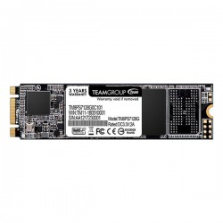 Team MS30 M.2 2280 128GB SATA SSD