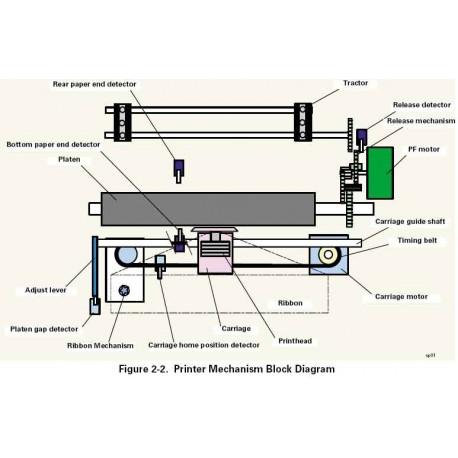 Bottom paper end detector LX300+II