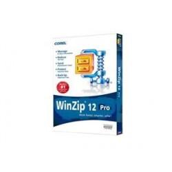 Winzip 12 Pro Retail
