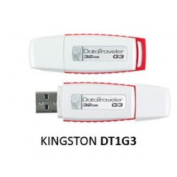 Kingston NE DT1G3-32GB