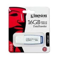 Kingston NE DT1G3-16GB