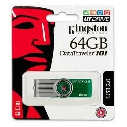 Kingston NE DT1G3-64GB